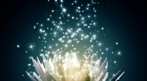 Light-Lotus-1-672x372